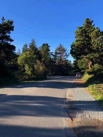 This road leads the way through Barview Jetty Park. You will not get lost.