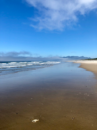 Blue has been scientifically proven as a calming color. Looking at the ocean can change your brain waves on a beach walk.