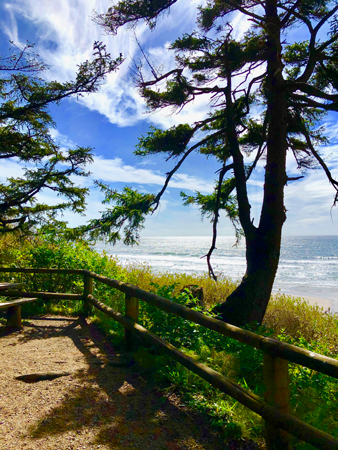 Beautiful view of the Pacific Ocean from Ecola State Park on the Oregon Coast.