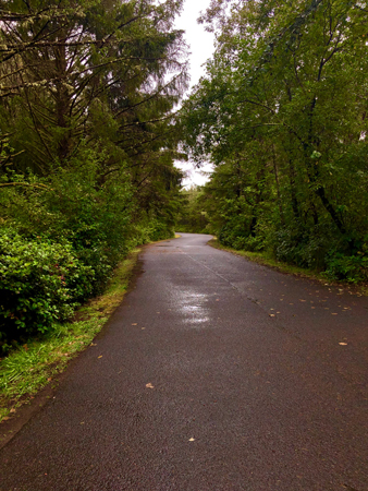 The road from Beach Drive leading to the parking lot at Manhattan Beach State Park.