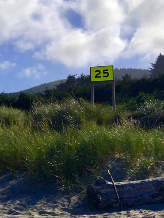 The 25 marker denotes a path which will take you right to the restrooms at Manhattan Beach State Park.