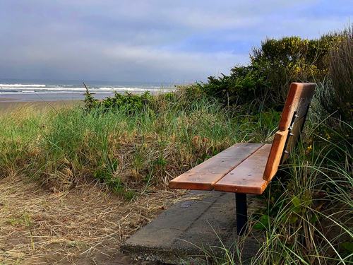 Secluded bench overlooking the Pacific Ocean at Manhattan Beach State Park.