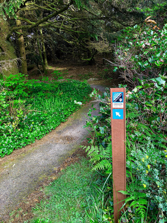 A guidepost marker letting you know this trail leads right out to the Pacific Ocean.