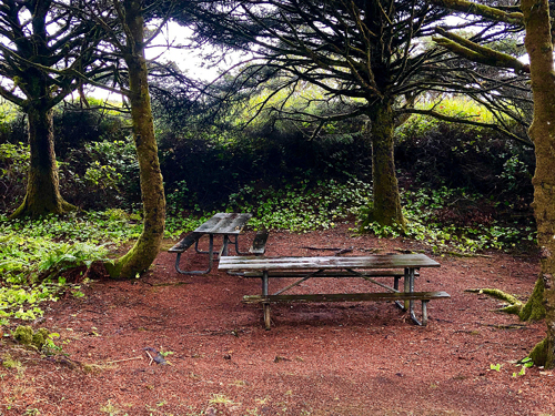 Manhattan Beach State Park has several specific areas with picnic tables.