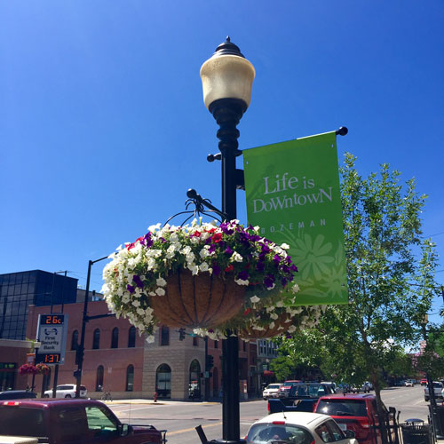 A morning in Bozeman Montana is enhanced by the beautiful flower boxes on every street light along Main Street.