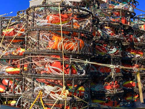 Colorful crab traps in Newport Harbor.