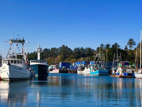Fishing boats at Newport Harbor Oregon.