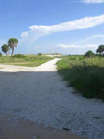 The north end of the Treasure Island Beachtrail has a well-used path down to the ocean.