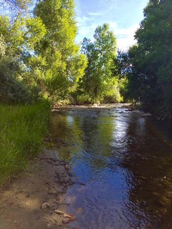 Clear Creek alongside of Clear Creek Trail, in Buffalo WY.