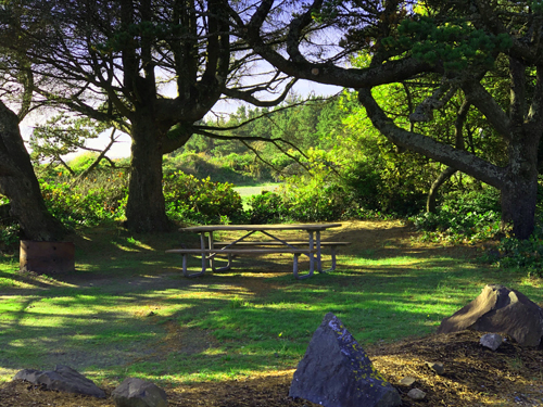 Secluded picnic table at Barview Jetty Park entrance.
