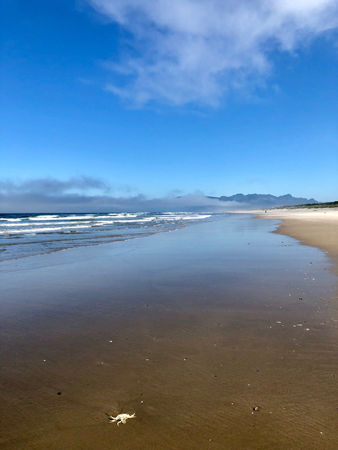 The beach is deserted and peaceful in the mornings. An easy place to walk and give thanks. Rockaway Beach Oregon.