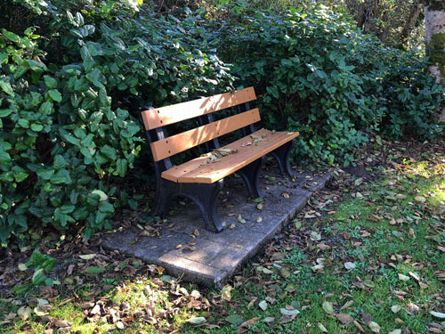 This bench is on the east side of Manzanita City Park.