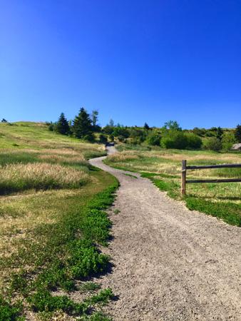 Pathway up Peet's Hill in Bozeman MT.